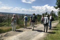 Bei strahlendem Sonnenschein genoss die Gruppe zwischendurch den Blick auf Ettlingen und die Rheinebene.